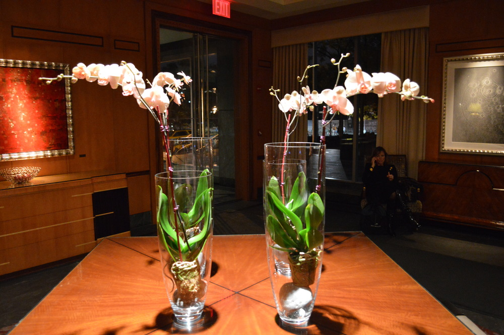Ritz Carlton Orchids