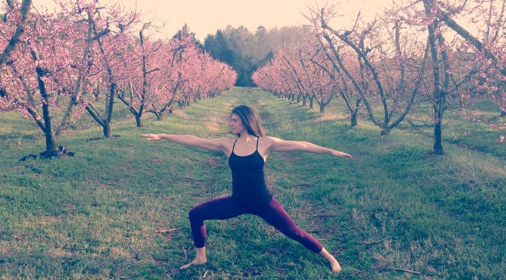 Warrior II - Lauren Schwaiger - Yoga