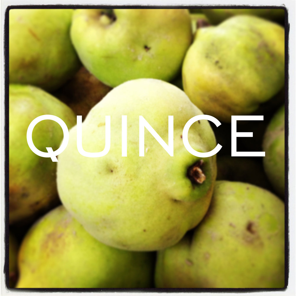 Quince-Organic2