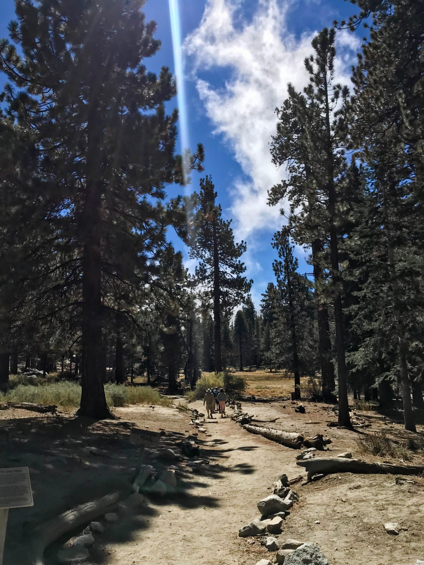 San Jacinto Mountains - Palm Springs - Lauren Schwaiger Travel Blog
