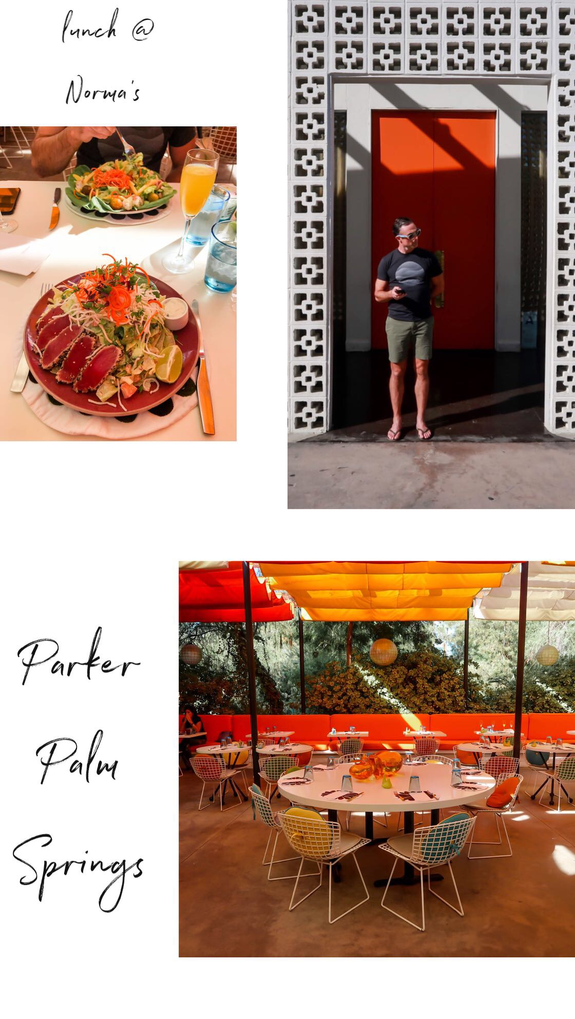 Parker Palm Springs - Norma's - Lauren Schwaiger Travel Blog