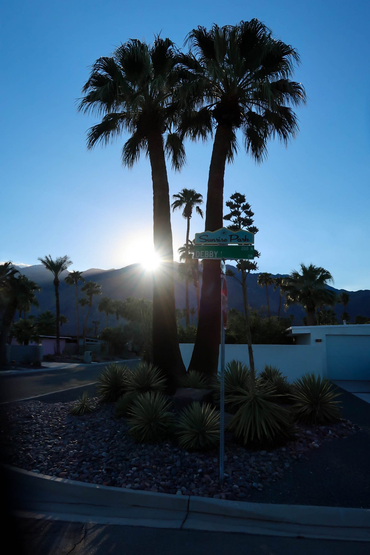 Sunrise Park - Palm Springs - Lauren Schwaiger Travel Blog